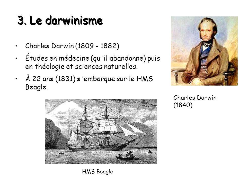 3. Le darwinisme Charles Darwin (1809 - 1882) Études en médecine (qu 'il abandonne) puis en théologie et sciences naturelles. À 22 ans (1831) s 'embar