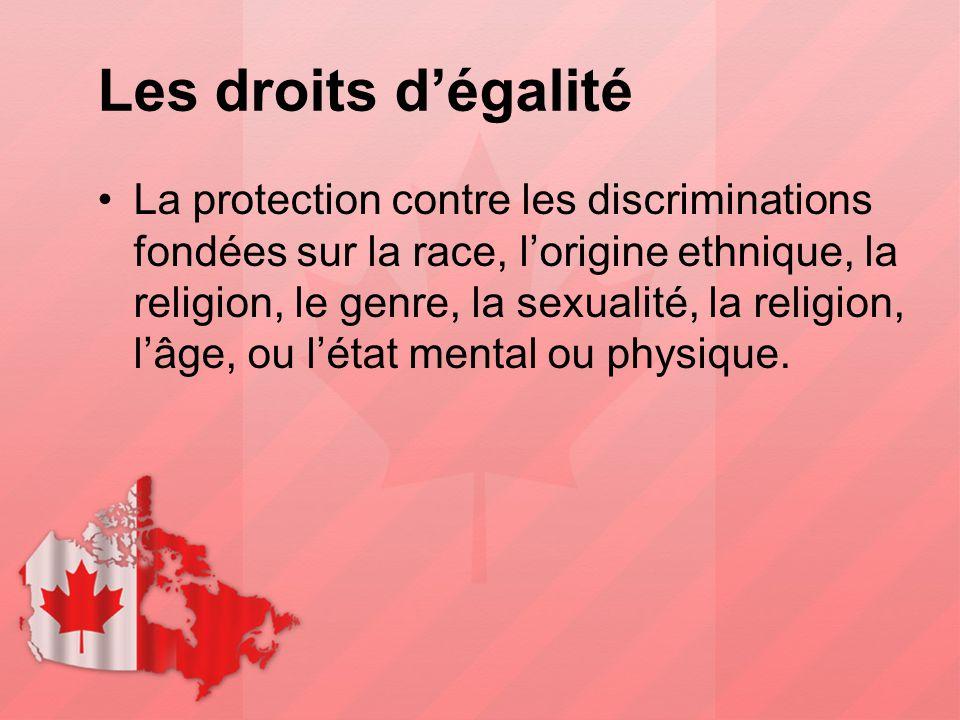 Les droits d'égalité La protection contre les discriminations fondées sur la race, l'origine ethnique, la religion, le genre, la sexualité, la religio