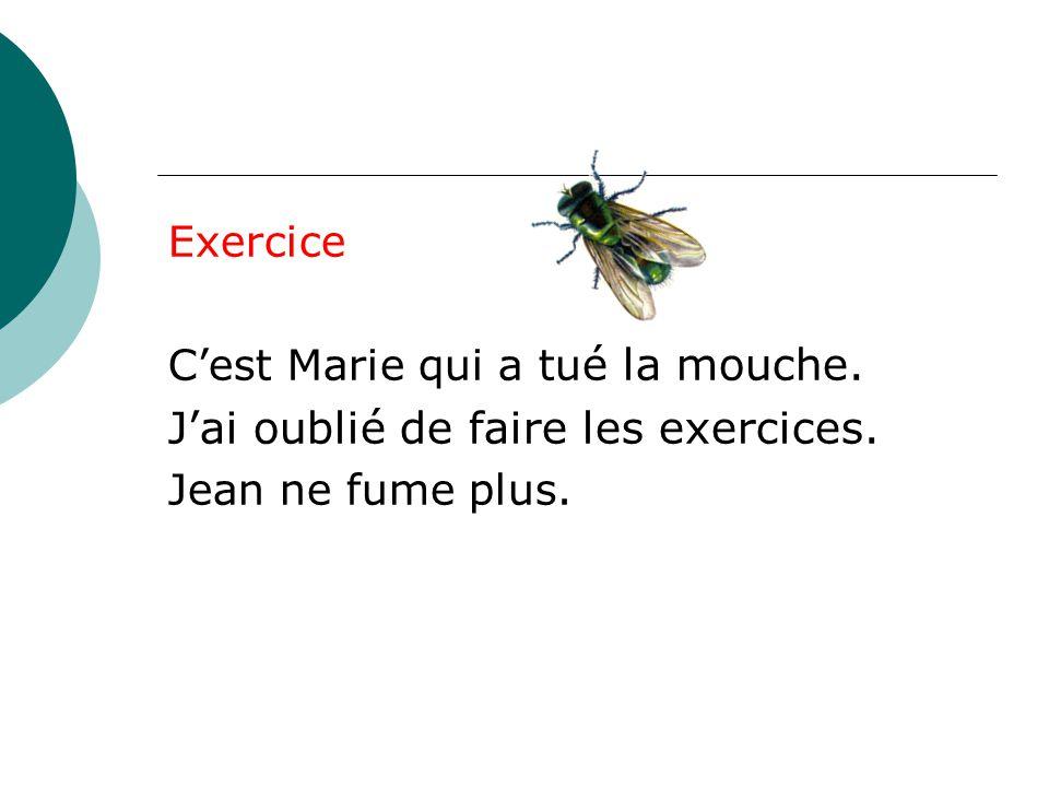 Exercice C'est Marie qui a tu é la mouche. J'ai oublié de faire les exercices. Jean ne fume plus.