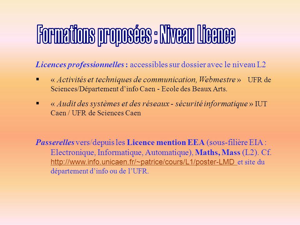 Licences professionnelles : accessibles sur dossier avec le niveau L2  « Activités et techniques de communication, Webmestre » UFR de Sciences/Département d'info Caen - Ecole des Beaux Arts.