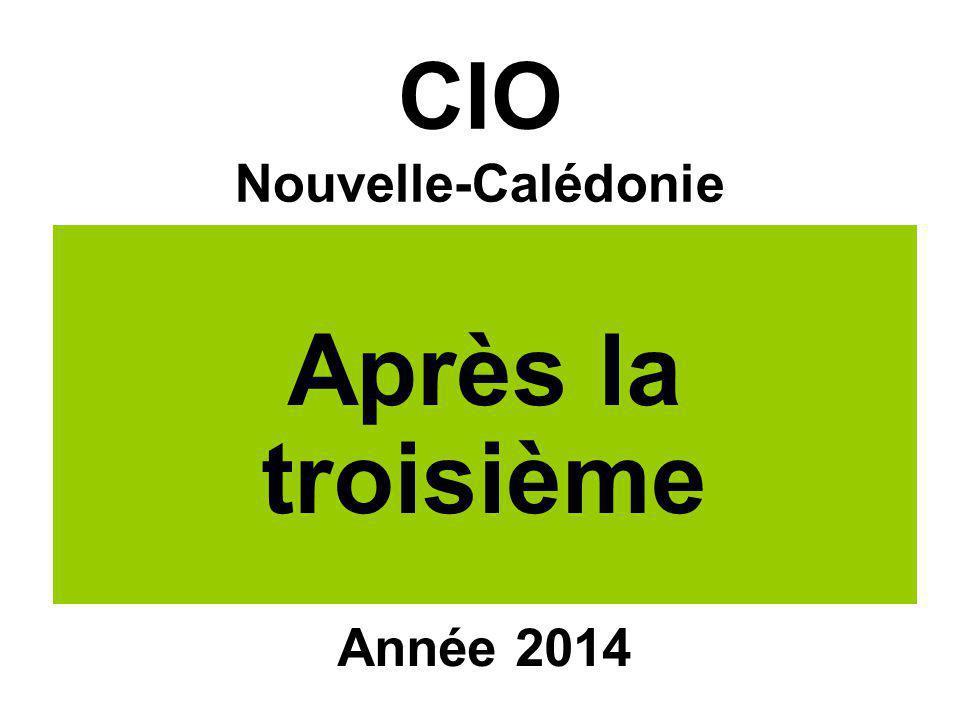 CIO Nouvelle-Calédonie Après la troisième Année 2014