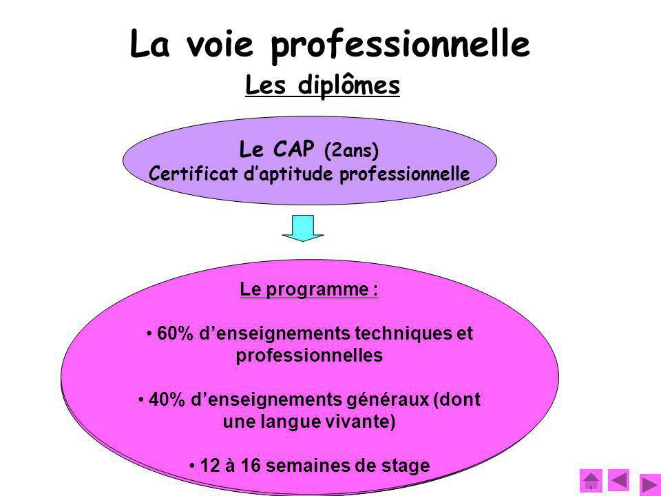 Et après :  Entrer dans la vie professionnelle  Se spécialiser en préparant une mention complémentaire par exemple Objectif : Se former à un métier