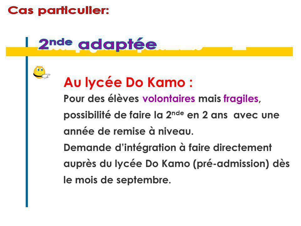 Au lycée Do Kamo : Pour des élèves volontaires mais fragiles, possibilité de faire la 2 nde en 2 ans avec une année de remise à niveau. Demande d'inté