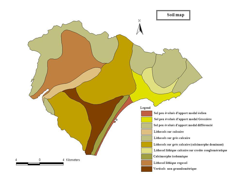 N Soil map Legend Sol peu évolués d'apport modal éolien Sol peu évolués d'apport modal Grossière Sol peu évolués d apport modal différencié Lithosols sur calcaire Lithosols sur grès calcaire Lithosols sur grès calcaire (calcimorphe dominant) Lithosol lithique calcaire sur croûte conglomératique Calcimorphe isohumique Lithosol lithique regosol Vertisols non granulométrique