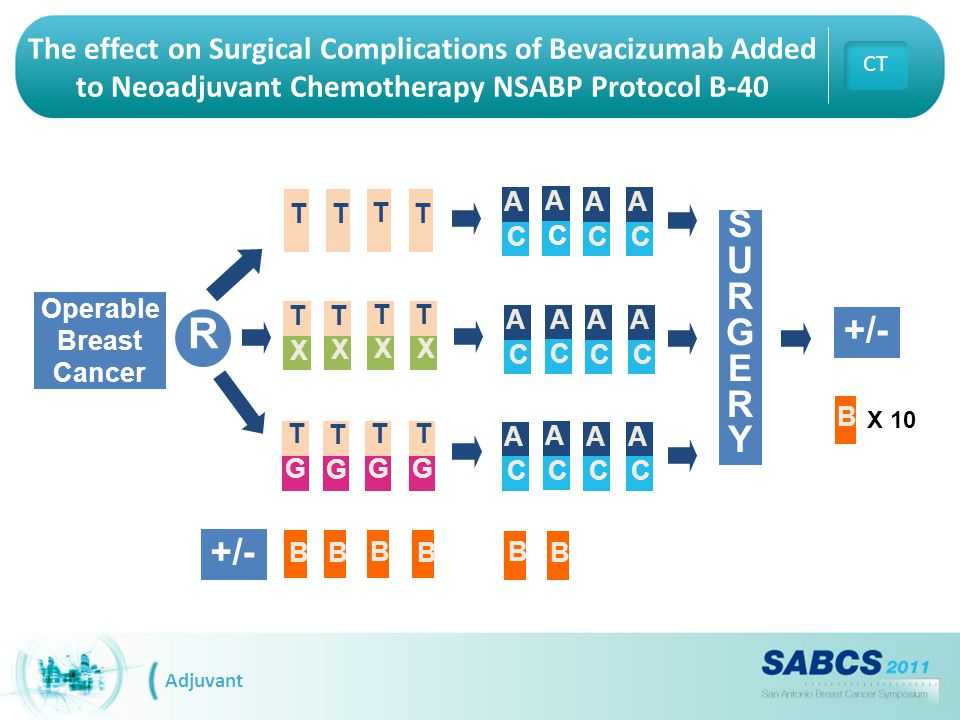 Operable Breast Cancer SURGERYSURGERY R T T TT T X T X T X T X T G T G T G T G A C A C A C A C A C A C A C A C A C A C A C A C +/- X 10 B B B B B B B +/- Adjuvant CT The effect on Surgical Complications of Bevacizumab Added to Neoadjuvant Chemotherapy NSABP Protocol B-40
