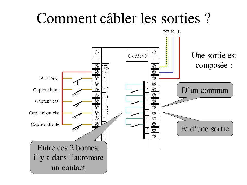 0V +24V 0,25A 0 1 2 3 4 5 6 7 8 9 10 11 ENTREES 24VCC 24VDC INPUTS C0 0 C1 1 C2 2 C3 3 C4.7 Capteur haut Capteur bas Capteur gauche B.P.