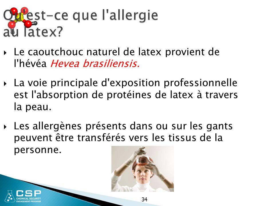 Qu'est-ce que l'allergie au latex?  Le caoutchouc naturel de latex provient de l'hévéa Hevea brasiliensis.  La voie principale d'exposition professi