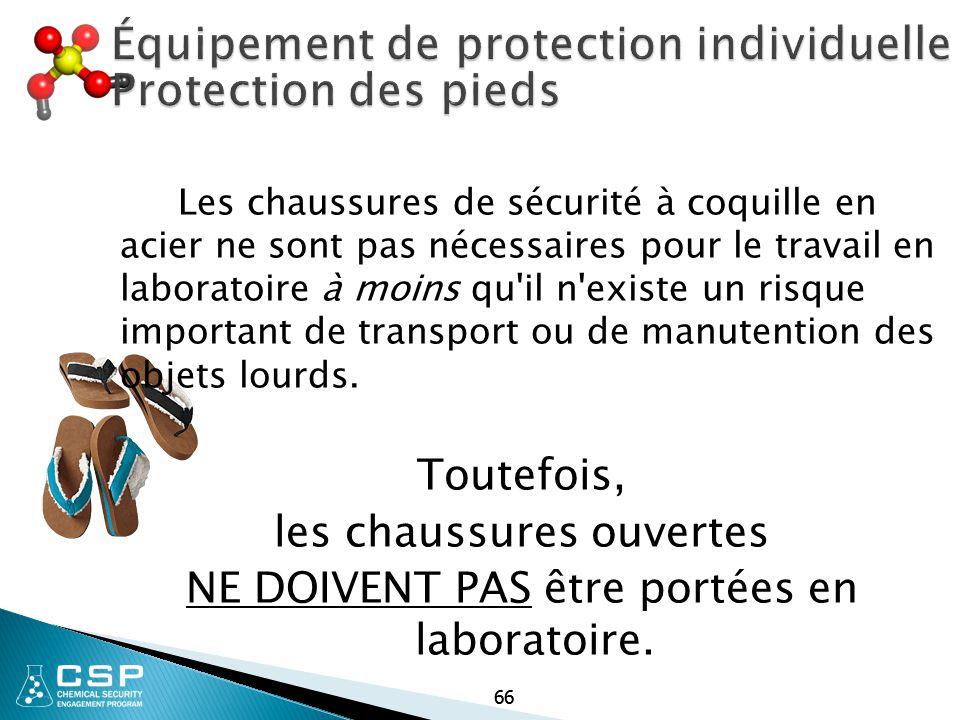 66 Équipement de protection individuelle Protection des pieds Les chaussures de sécurité à coquille en acier ne sont pas nécessaires pour le travail e