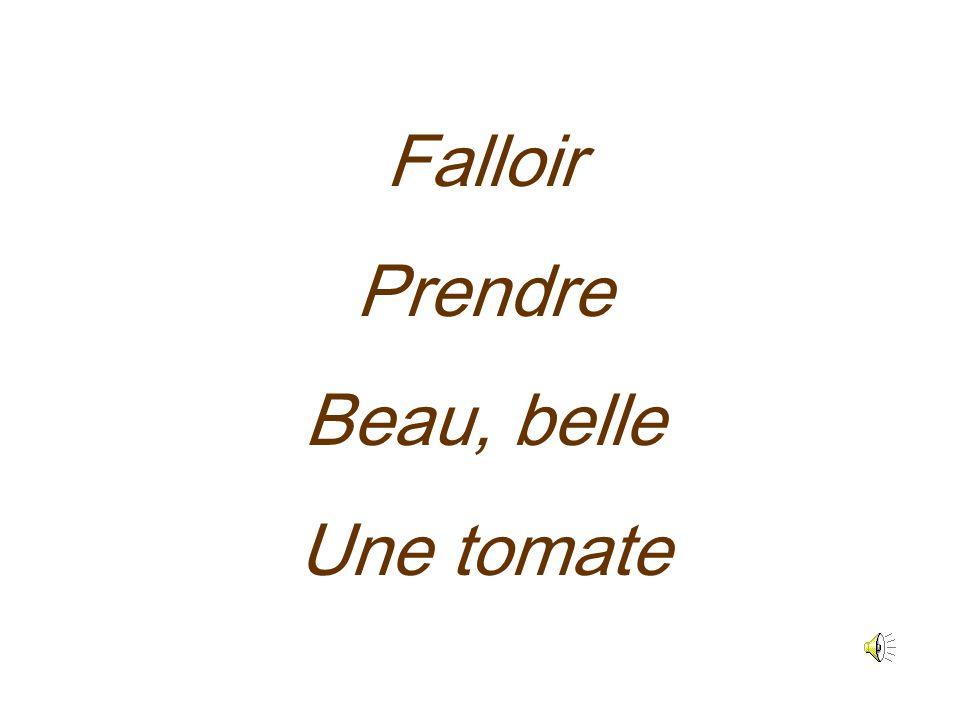 Falloir Prendre Beau, belle Une tomate