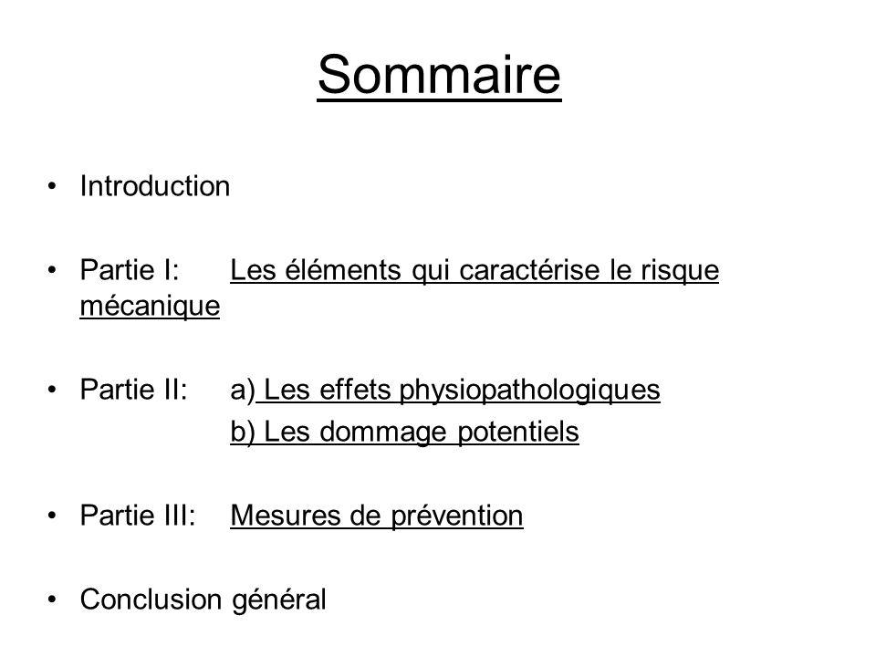 Introduction Partie I: Les éléments qui caractérise le risque mécanique Partie II: a) Les effets physiopathologiques b) Les dommage potentiels Partie