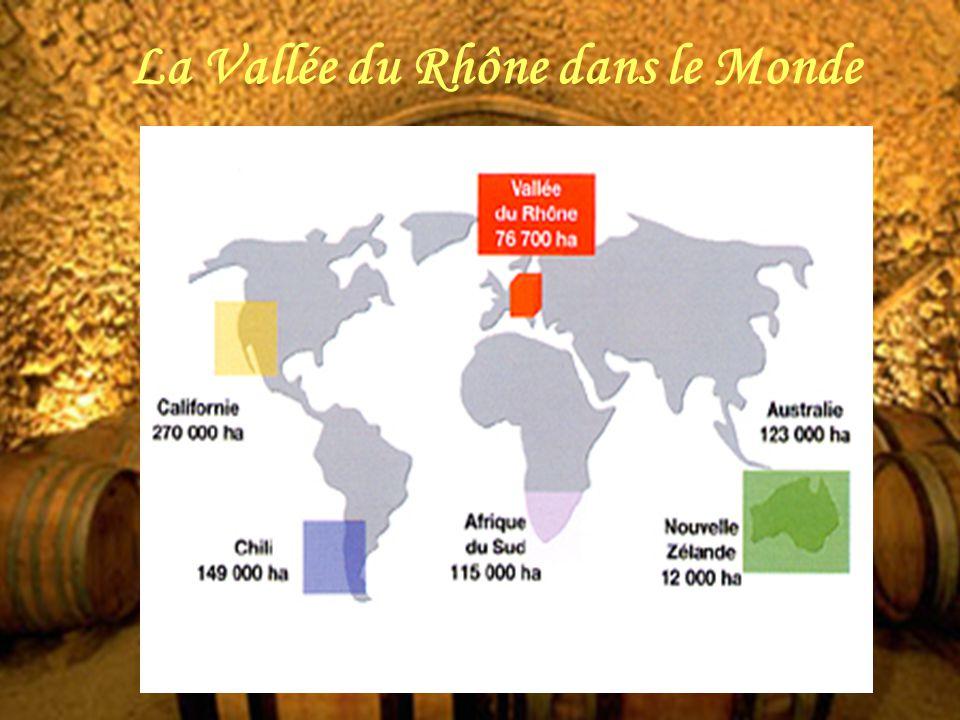 La Vallée du Rhône dans le Monde