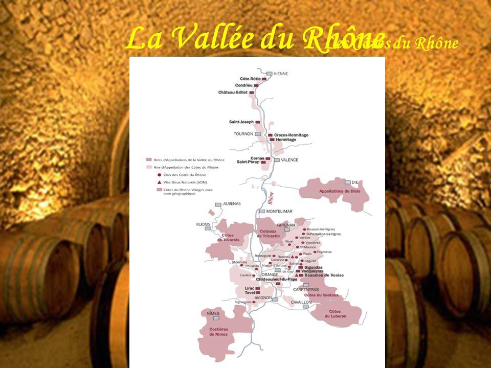 La Vallée du Rhône Les Côtes du Rhône