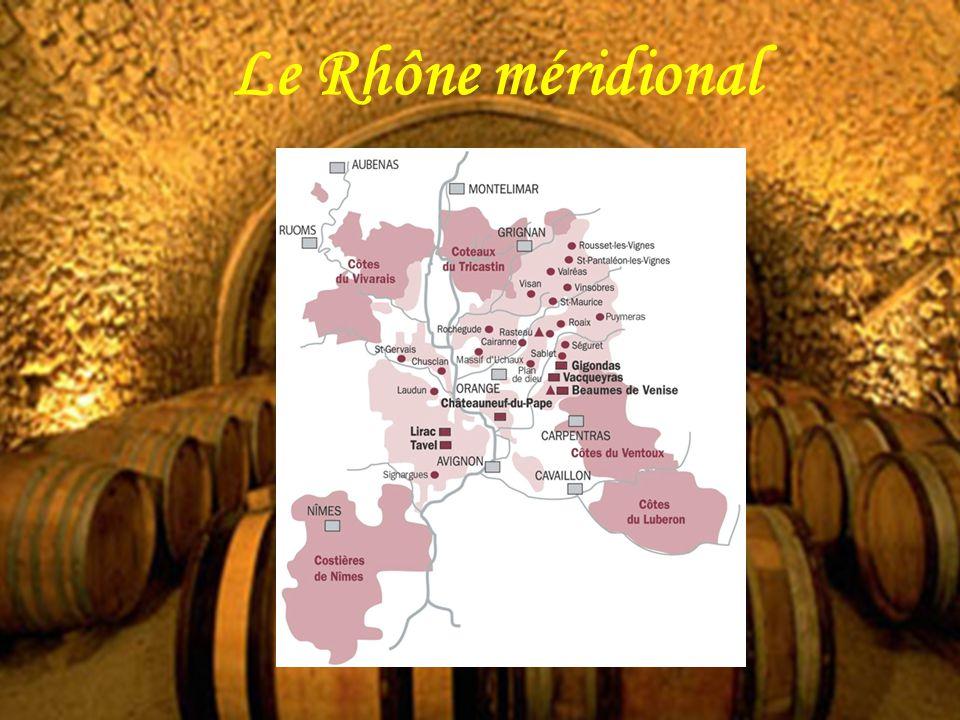 Le Rhône méridional