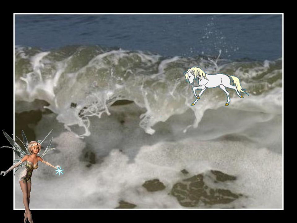 A cheval sur un rêve diamant