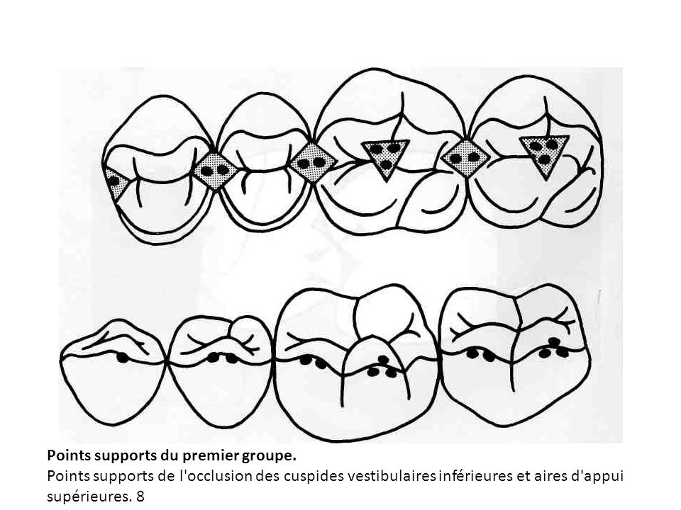 Points supports du premier groupe. Points supports de l'occlusion des cuspides vestibulaires inférieures et aires d'appui supérieures. 8