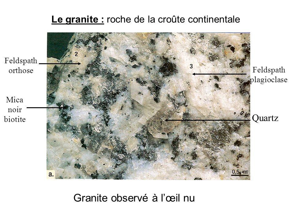 Le granite : roche de la croûte continentale Quartz Feldspath orthose Feldspath plagioclase Mica noir biotite Granite observé à l'œil nu