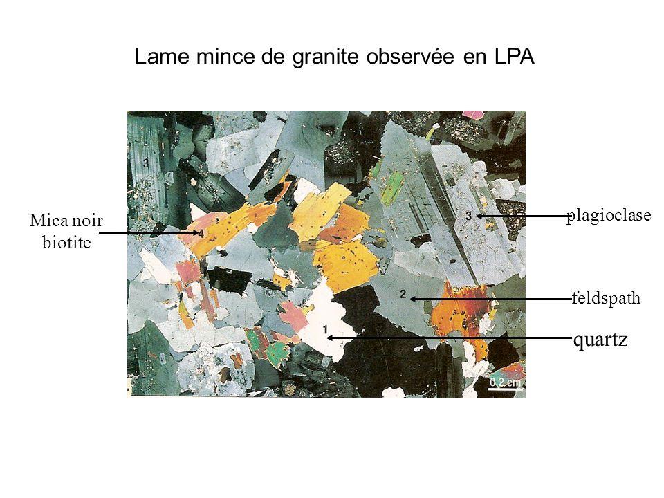 Péridotite LPNA LPA pyroxène olivine pyroxèn e olivin e