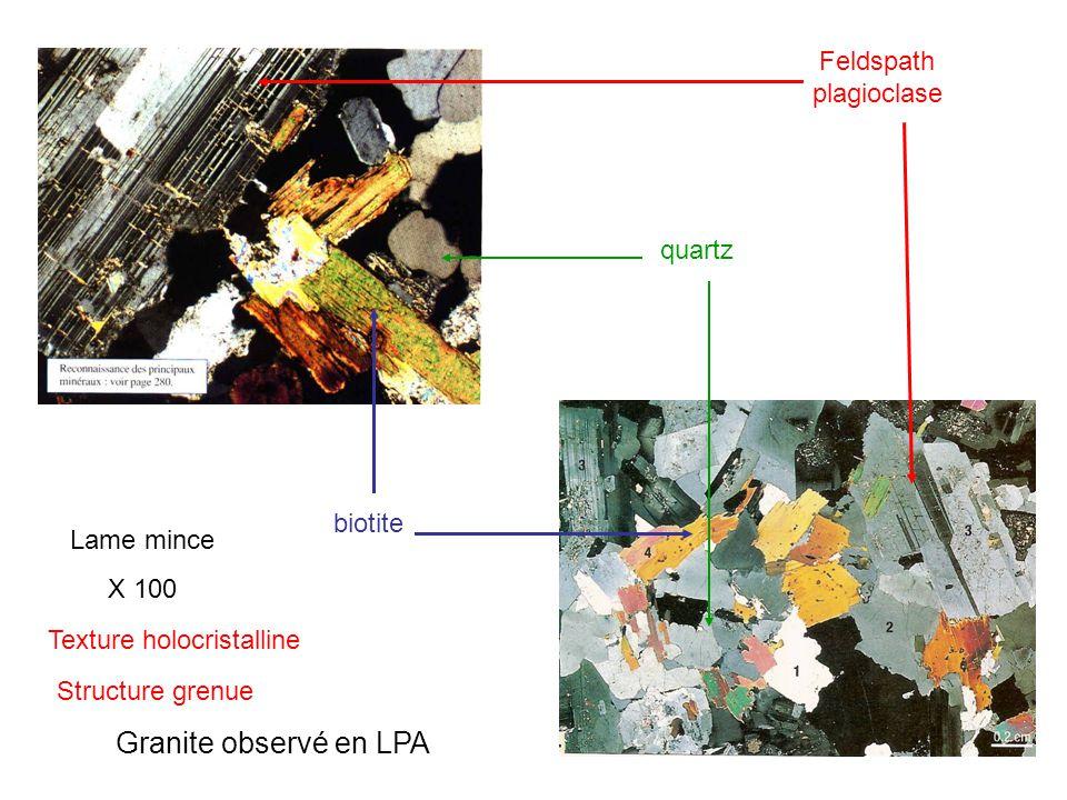 Granite observé en LPA Feldspath plagioclase quartz biotite Lame mince X 100 Texture holocristalline Structure grenue