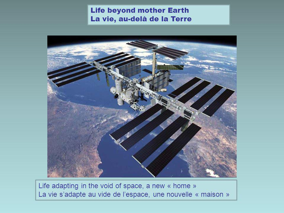 Life beyond mother Earth La vie, au-delà de la Terre Life adapting in the void of space, a new « home » La vie sadapte au vide de lespace, une nouvelle « maison »
