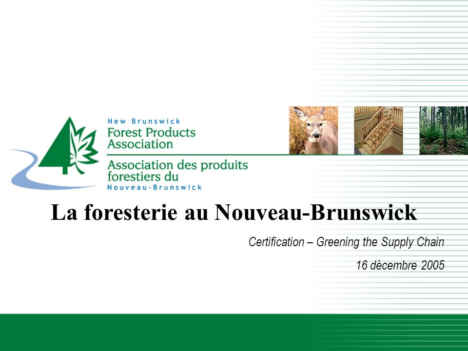 Lindustrie forestière du Nouveau-Brunswick La foresterie au Nouveau-Brunswick Certification – Greening the Supply Chain 16 décembre 2005