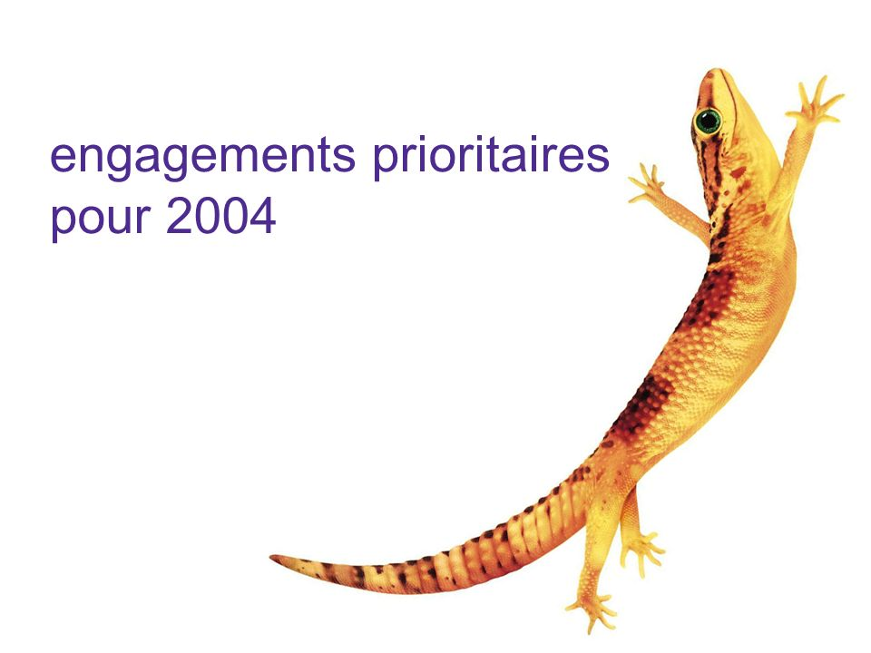 engagements prioritaires pour 2004