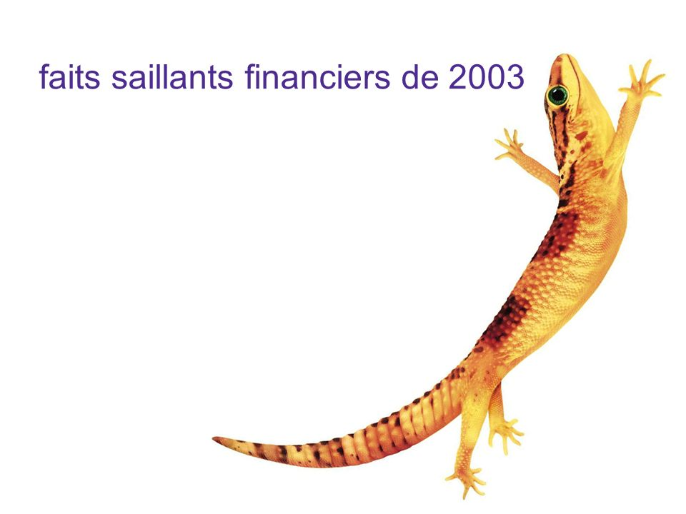 faits saillants financiers de 2003