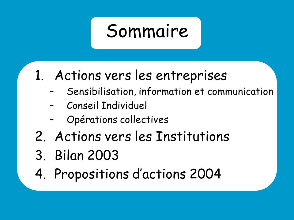 Sommaire 1.Actions vers les entreprises –Sensibilisation, information et communication –Conseil Individuel –Opérations collectives 2.Actions vers les Institutions 3.Bilan Propositions dactions 2004