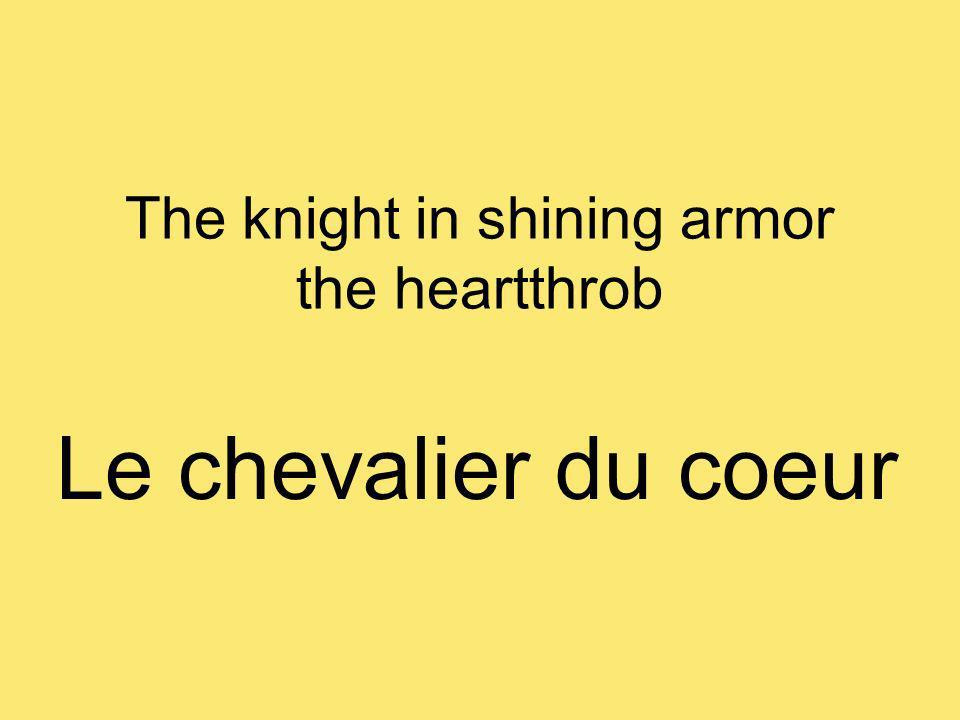 The knight in shining armor the heartthrob Le chevalier du coeur