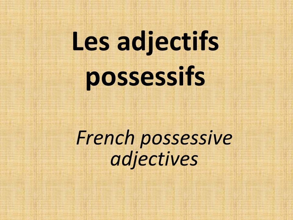 Les adjectifs possessifs French possessive adjectives