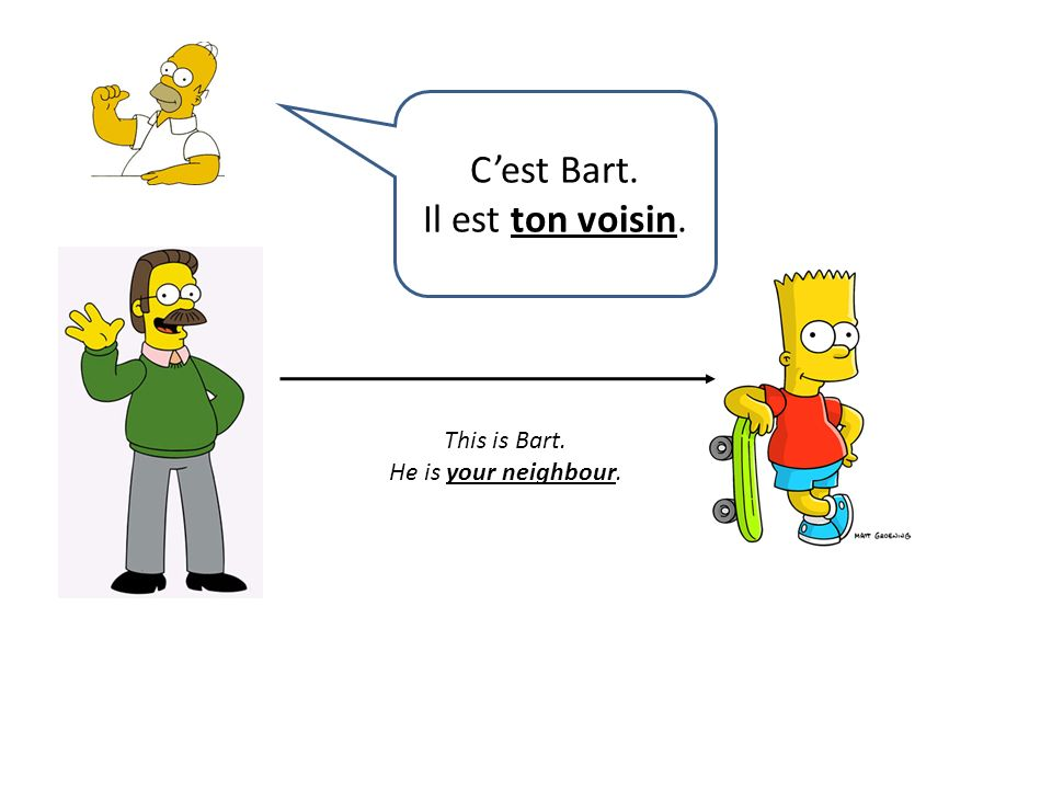 This is Bart. He is your neighbour. Cest Bart. Il est ton voisin.
