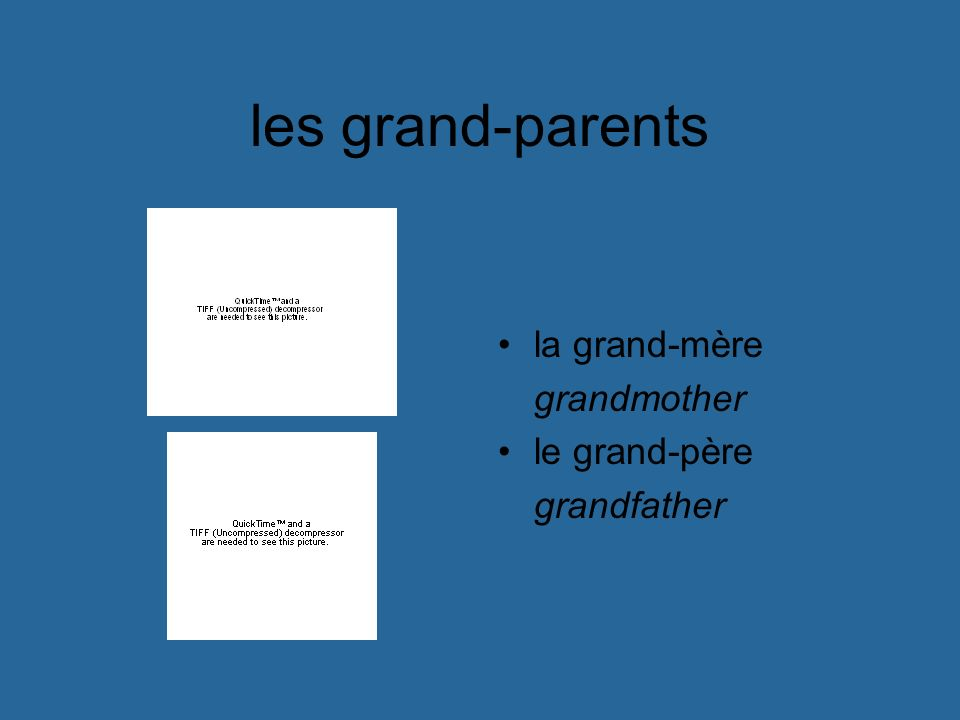 les grand-parents la grand-mère grandmother le grand-père grandfather