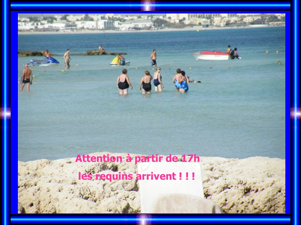 Il est trop fin le sable Attention au palmier