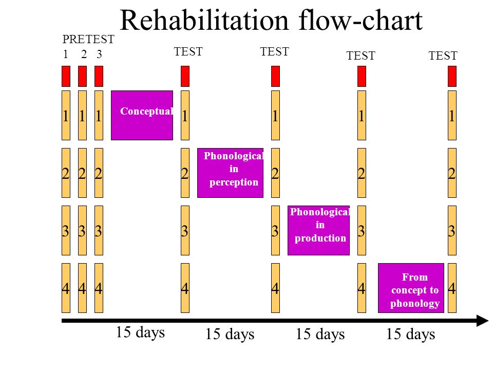 Rehabilitation flow-chart Conceptual Phonological in perception Phonological in production From concept to phonology TEST 15 days PRETEST 1 2 3