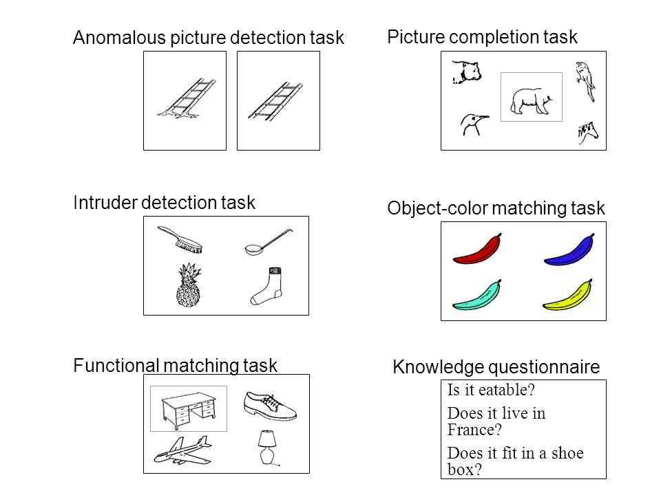 Intruder detection task Functional matching task Anomalous picture detection task Picture completion task Object-color matching task Is it eatable.
