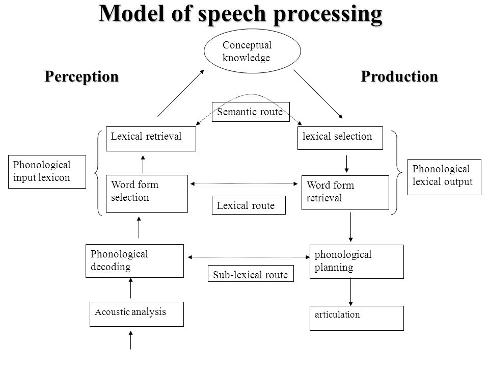 Model of speech processing Semantic route Lexical retrieval Word form selection lexical selection Phonological decoding Phonological lexical output Phonological input lexicon phonological planning Word form retrieval Sub-lexical route Lexical route Acoustic analysis PerceptionProduction articulation Conceptual knowledge