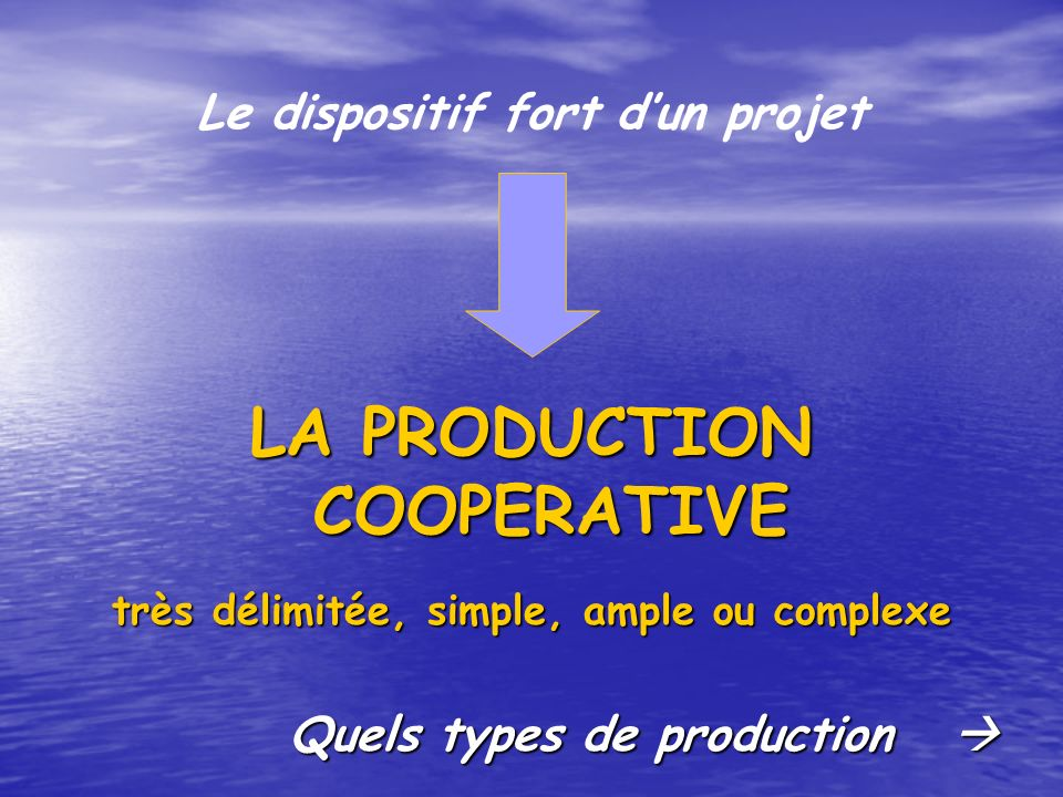 Le dispositif fort dun projet LA PRODUCTION COOPERATIVE très délimitée, simple, ample ou complexe Quels types de production Quels types de production
