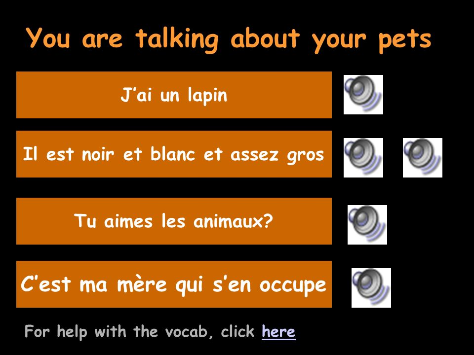 You are talking about your pets For help with the vocab, click herehere Listen to the question and replyIl est noir et blanc et assez gros Ask your friend if he/she likes animals Tu aimes les animaux.