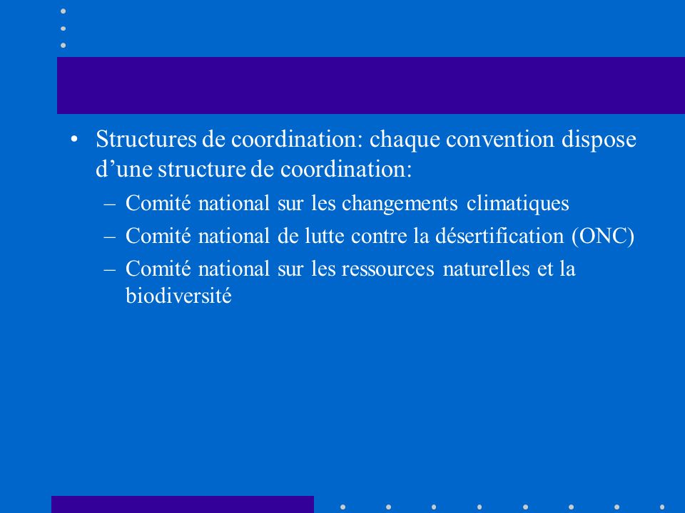 Structures de coordination: chaque convention dispose dune structure de coordination: –Comité national sur les changements climatiques –Comité national de lutte contre la désertification (ONC) –Comité national sur les ressources naturelles et la biodiversité
