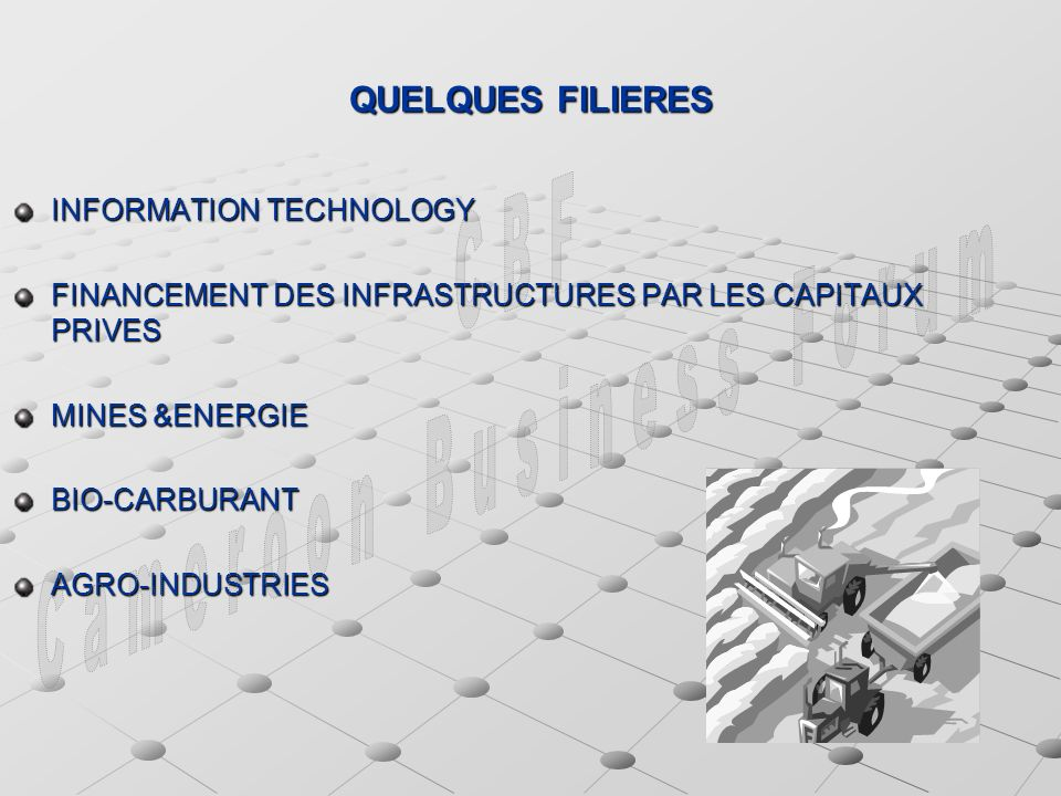 QUELQUES FILIERES INFORMATION TECHNOLOGY FINANCEMENT DES INFRASTRUCTURES PAR LES CAPITAUX PRIVES MINES &ENERGIE BIO-CARBURANTAGRO-INDUSTRIES