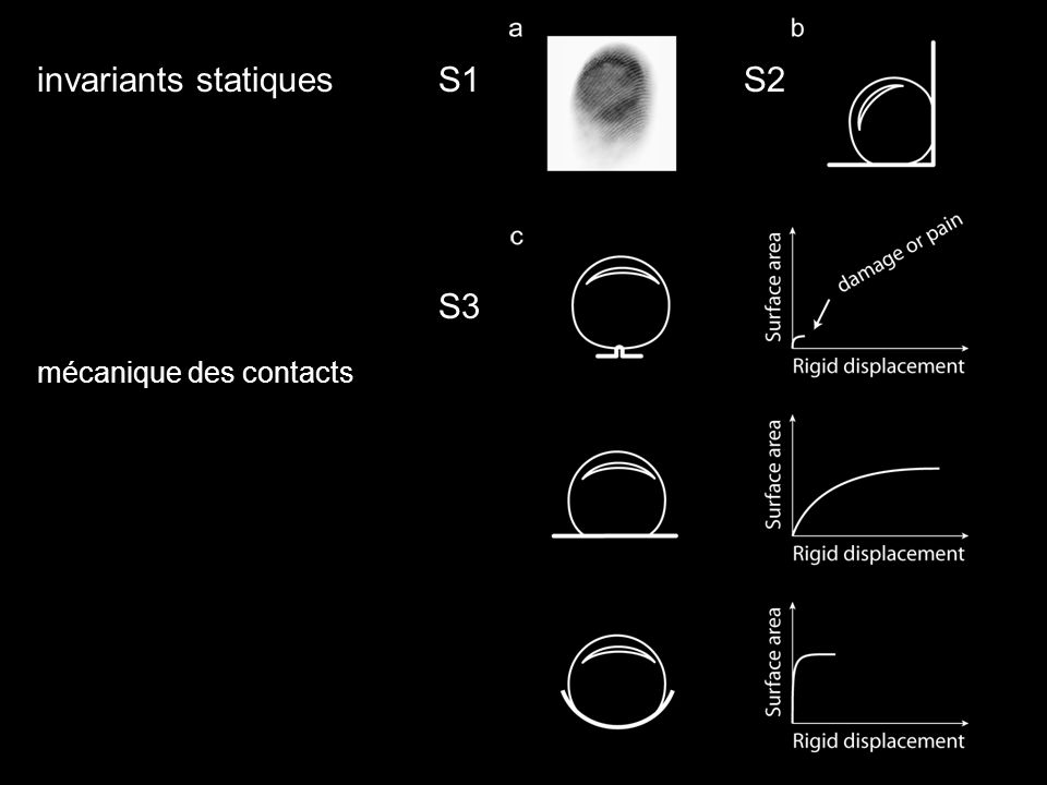 invariants statiques mécanique des contacts S1 S3 S2