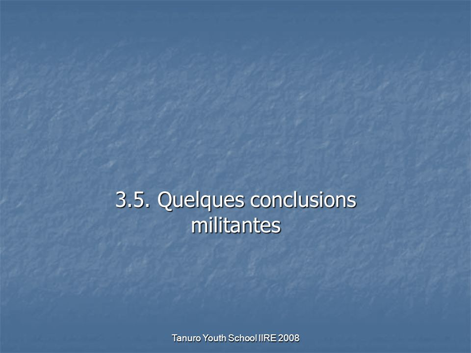 Tanuro Youth School IIRE 2008 3.5. Quelques conclusions militantes