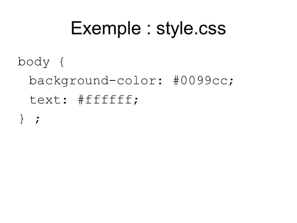 Exemple : style.css body { background-color: #0099cc; text: #ffffff; } ;