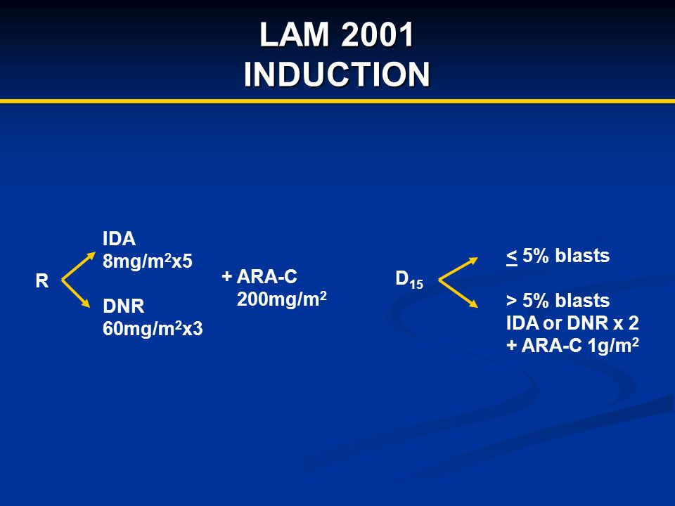 LAM 2001 INDUCTION R IDA 8mg/m 2 x5 DNR 60mg/m 2 x3 + ARA-C 200mg/m 2 D 15 < 5% blasts > 5% blasts IDA or DNR x 2 + ARA-C 1g/m 2