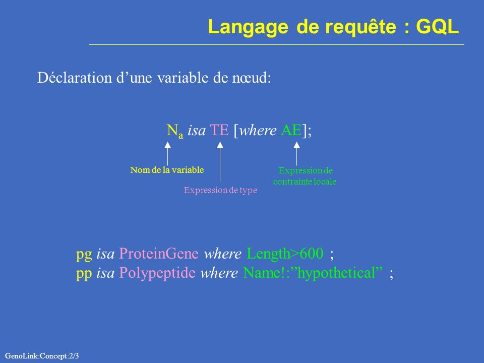 Langage de requête : GQL Déclaration dune variable de nœud: N a isa TE [where AE]; Nom de la variable Expression de type Expression de contrainte locale pg isa ProteinGene where Length>600 ; pp isa Polypeptide where Name!:hypothetical ; GenoLink:Concept:2/3