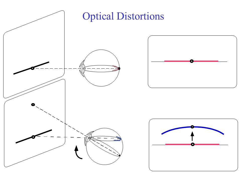Optical Distortions