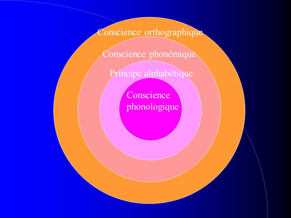 Conscience orthographique Conscience phonémique Principe alphabétique Conscience phonologique