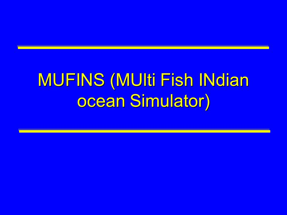 MUFINS (MUlti Fish INdian ocean Simulator)