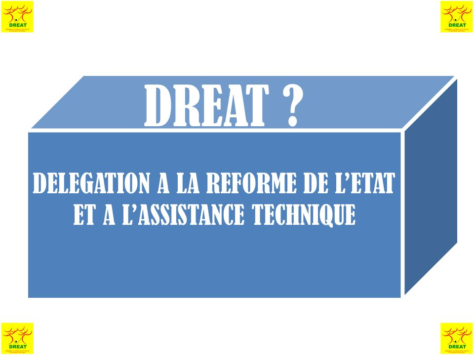 DELEGATION A LA REFORME DE LETAT ET A LASSISTANCE TECHNIQUE DREAT