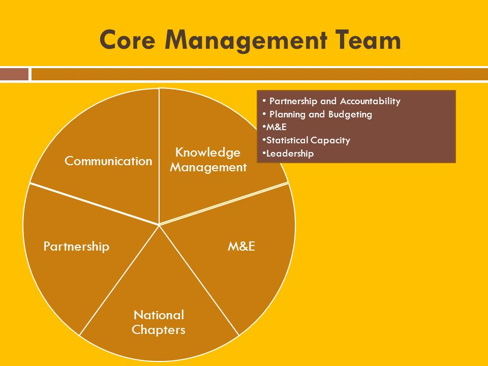 Core Management Team Knowledge Management M&E National Chapters Partnership Communication Partnership and Accountability Planning and Budgeting M&E Statistical Capacity Leadership