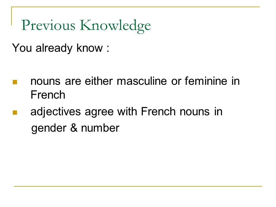 Previous Knowledge You already know : nouns are either masculine or feminine in French adjectives agree with French nouns in gender & number